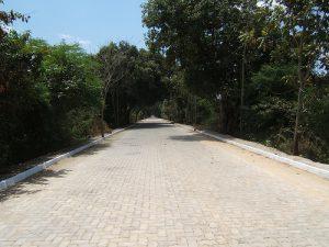 Estrada_Cedro_diante