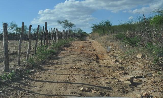 estrada_parana-tapuiara